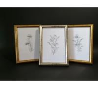 Photo frame (round color mix) set - 3 pcs. 10x15 13x18