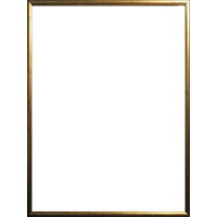 Plastikinis foto rėmelis 30x40 (auksinė, sidabrinė)